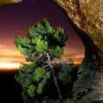 El Monte Arabí, un lugar de encanto.-  Autor Garrudo