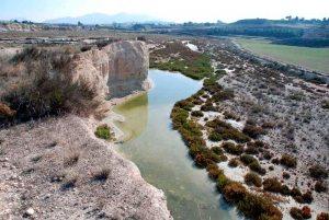 El Humedal Ajauque y Rambla Salada, zonas de especial protección por la gran diversidad de ecosistemas.